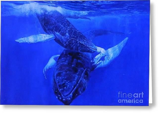 Playful Humpbacks Greeting Card