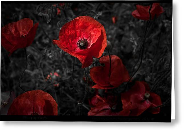 Greeting Card featuring the photograph  Poppy Red by Beverly Cash