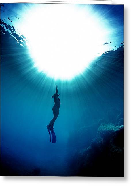 The Freediver Greeting Card by Rico Besserdich