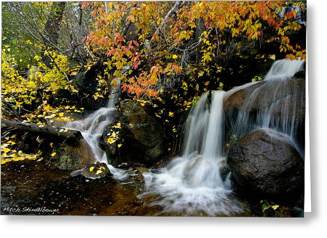 Greeting Card featuring the photograph  Waterfall by Mitch Shindelbower