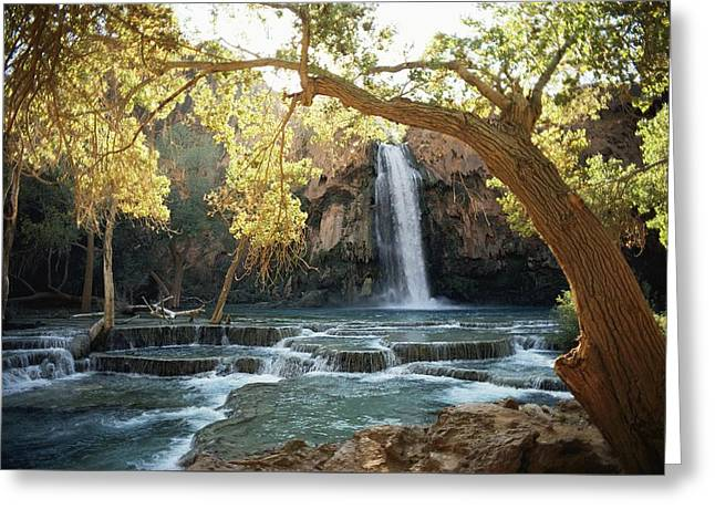 Scenic Waterfall Framed By Trees Greeting Card