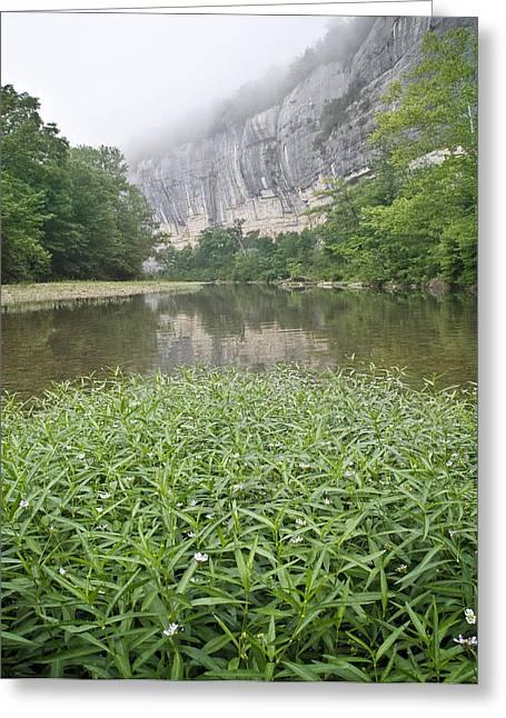 0706-0079 Roark Bluff At Steel Creek 1 Greeting Card by Randy Forrester