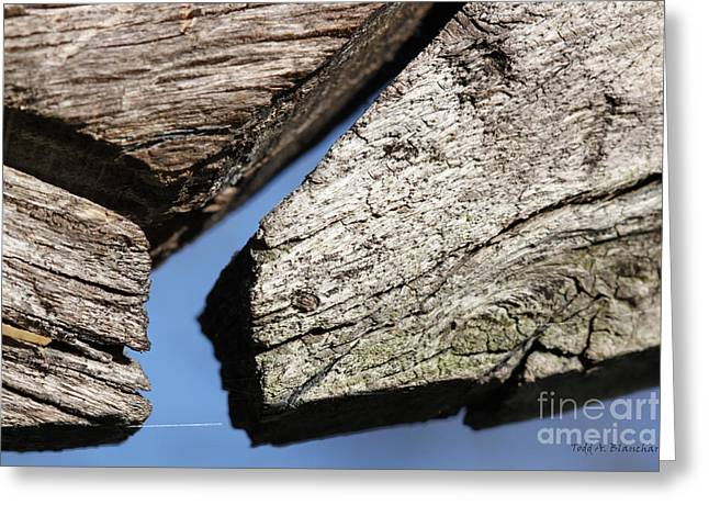 Greeting Card featuring the photograph Abstract With Angles by Todd Blanchard