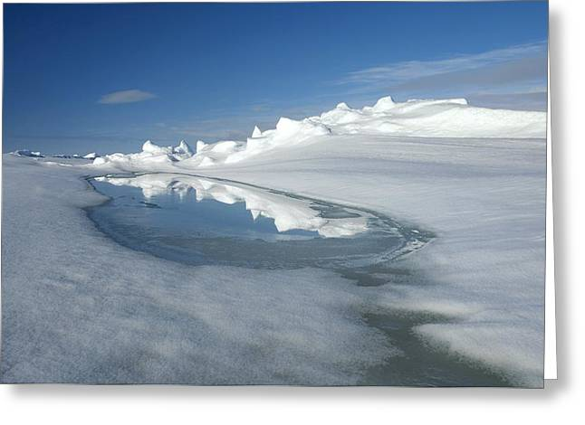 Admiralty Inlet, Nunavut, Canada Greeting Card by Louise Murray