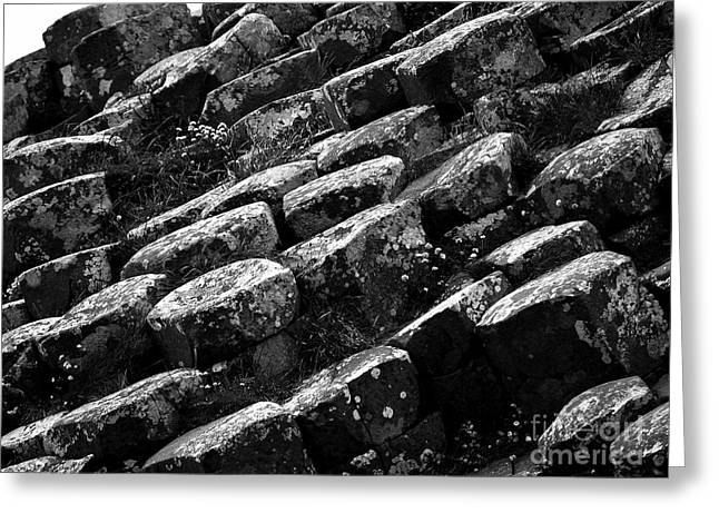 Another View Of The Giants Causeway Greeting Card