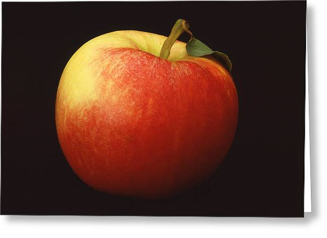 Apple Greeting Card by Mark Greenberg