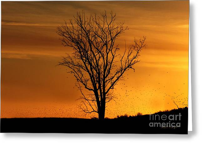 Greeting Card featuring the digital art At End Of Day II by Rhonda Strickland