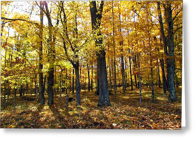 Autumn Day Greeting Card