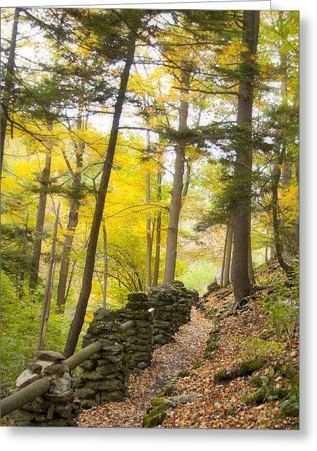 Autumn Hike Greeting Card by Cindy Haggerty