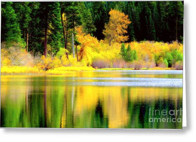 Greeting Card featuring the photograph Autumn In Lassen Park  by Irina Hays