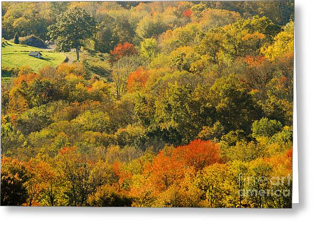Autumn In The Litchfield Hills Connecticut Usa Greeting Card by Sabine Jacobs