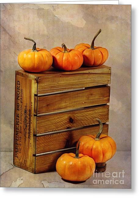 Autumn Still Life Greeting Card by Judi Bagwell