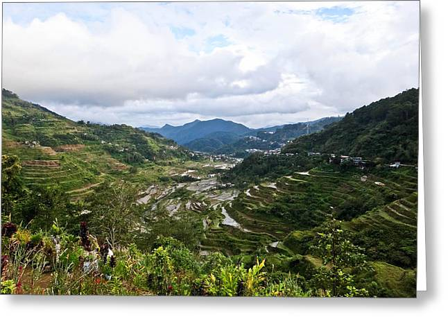 Banaue Rice Terraces Greeting Card