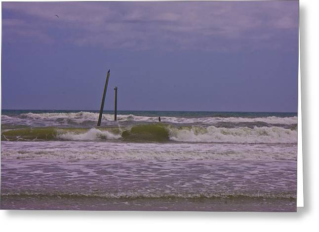 Barnacle Bill's Pier Remnants Greeting Card by Betsy Knapp