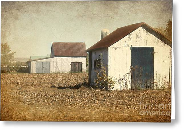 Barns Greeting Card by Sophie Vigneault