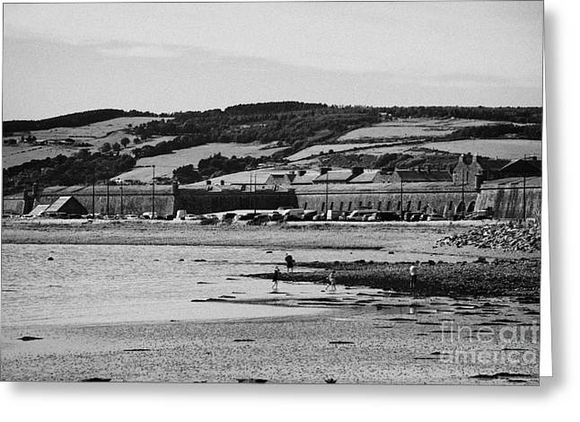 beach and shoreline between ardersier and fort george highland Scotland Greeting Card by Joe Fox