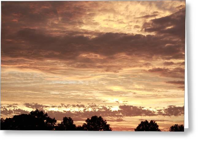 Beautiful Sunset Greeting Card by Ann Murphy