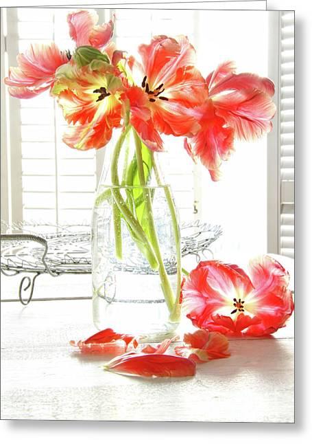 Beautiful Tulips In Old Milk Bottle  Greeting Card