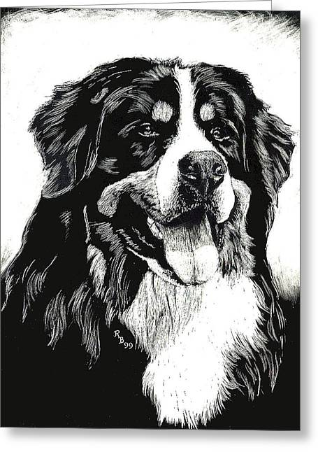Greeting Card featuring the drawing Bernese Mountain Dog by Rachel Hames