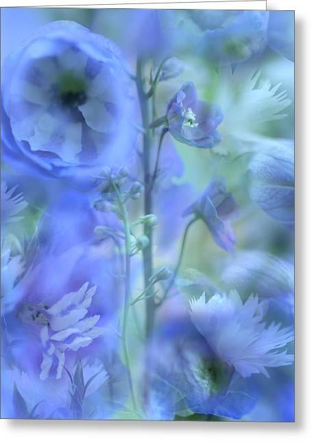 Blue Delphinium Greeting Card by Bonnie Bruno