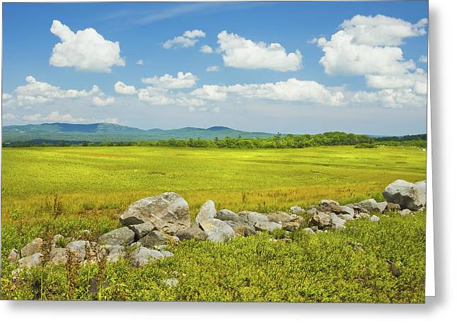 Blue Sky And Clouds Over Maine Blueberry Field Greeting Card