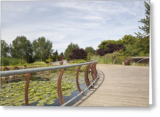 State Parks In Oregon Greeting Cards - Boardwalk Over Water Gardens At Oregon Greeting Card by Douglas Orton