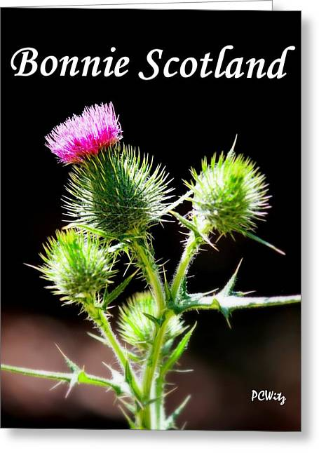 Bonnie Scotland Greeting Card by Patrick Witz