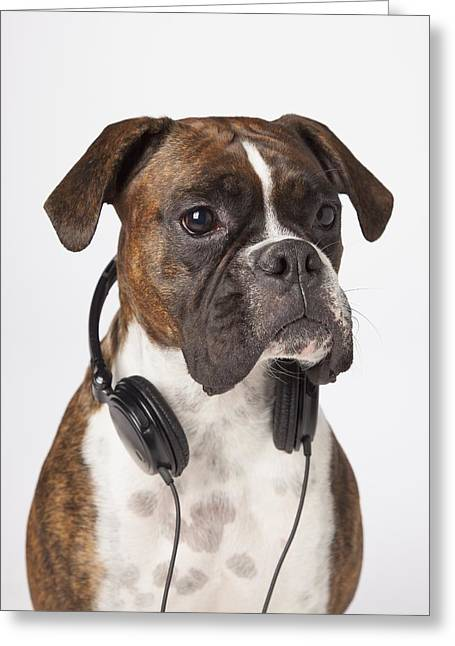 Boxer Dog With Headphones Greeting Card by LJM Photo