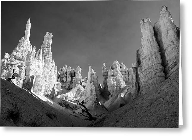 Greeting Card featuring the photograph Bryce Canyon Infrared by Mike Irwin
