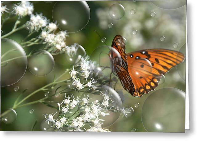 Bubble Fly Greeting Card by Steven Richardson