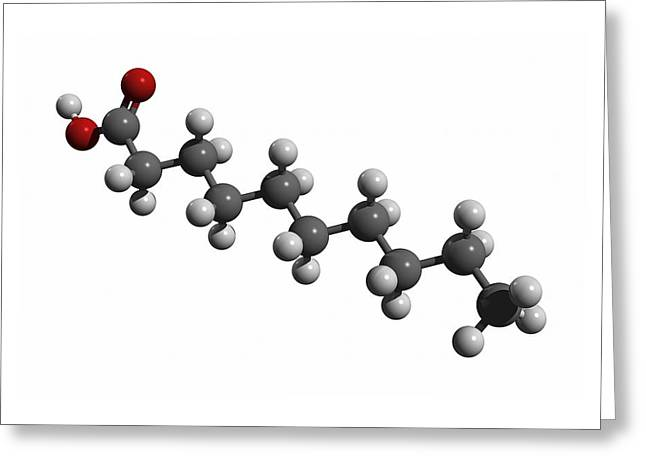 Capric Acid Molecule Greeting Card by Friedrich Saurer