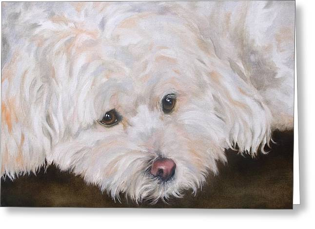 Casey Greeting Card by Diane Daigle