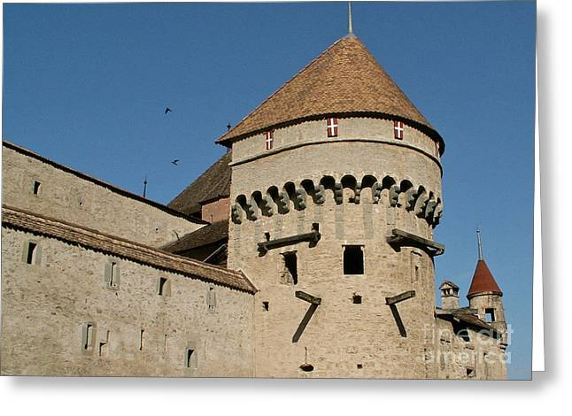 Castle Of Chillon  Greeting Card by Evgeny Pisarev