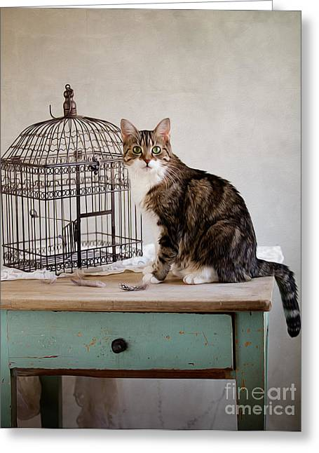 Cat And Bird Greeting Card by Nailia Schwarz