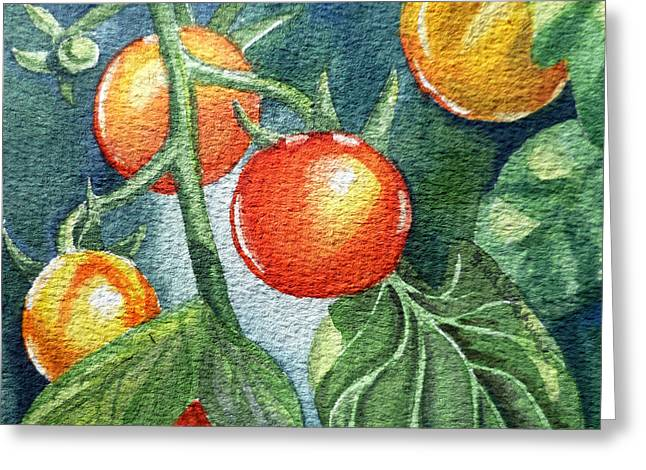 Cherry Tomatoes Greeting Card by Irina Sztukowski