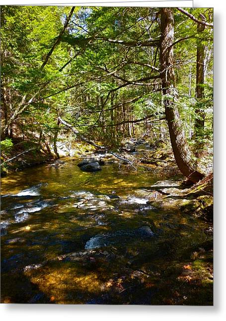 Childs Brook 6 Greeting Card by George Ramos