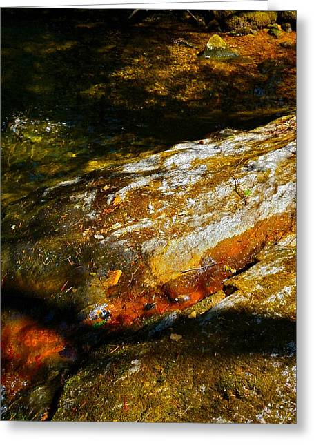 Childs Brook Shadows 4 Greeting Card by George Ramos