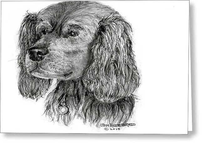 Greeting Card featuring the drawing Cocker Spaniel by Jim Hubbard