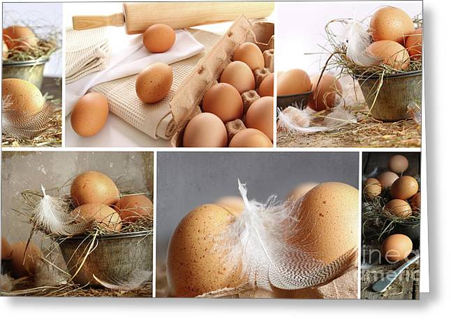 Collage Of Brown Eggs Images  Greeting Card by Sandra Cunningham