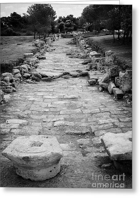 Colonnaded Street In The Ancient Site Of Salamis Famagusta Turkish Republic Of Northern Cyprus Trnc Greeting Card