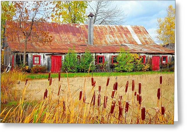 Colorful Barn ... Greeting Card