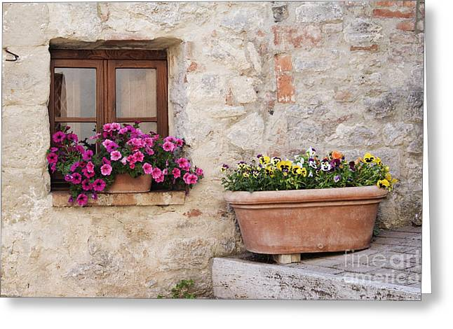 Colorful Flowers In Window Flower Box Greeting Card by Jeremy Woodhouse