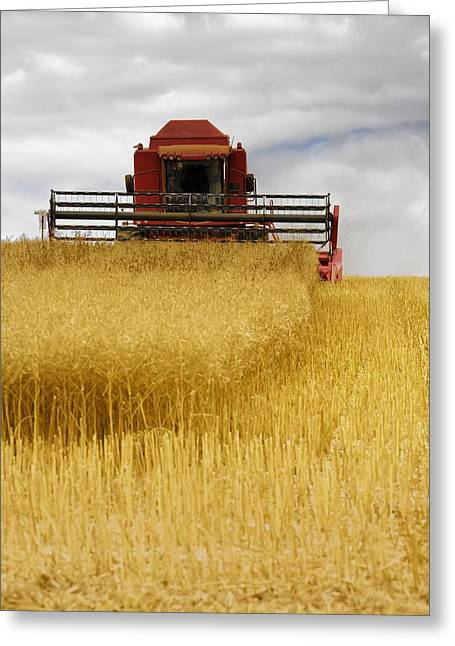 Combine Harvester, North Yorkshire Greeting Card