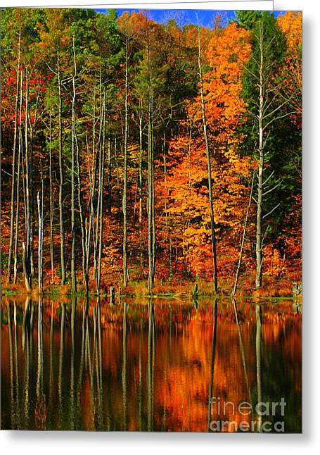 Coxsackie New York State Greeting Card by Mark Gilman