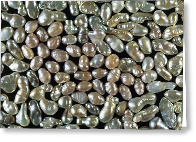 Cultured Freshwater Pearls Greeting Card