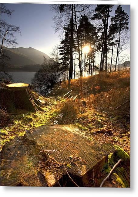 Cumbria, England Lake Scenic At Sunrise Greeting Card by John Short