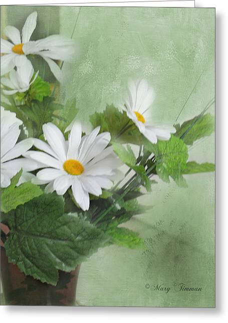 Greeting Card featuring the photograph Daisies by Mary Timman
