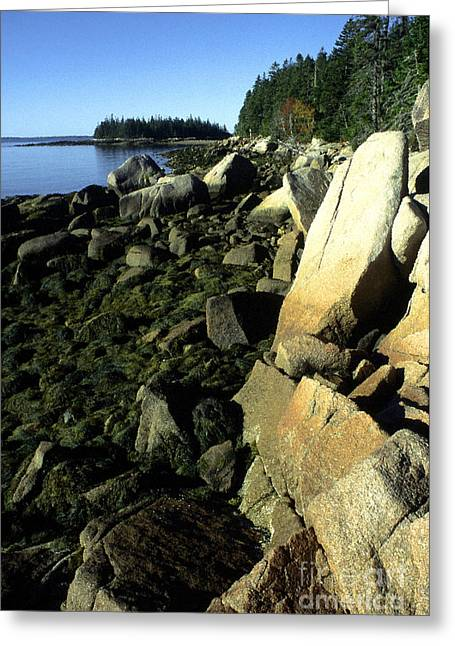 Deer Isle And Barred Island Greeting Card by Thomas R Fletcher