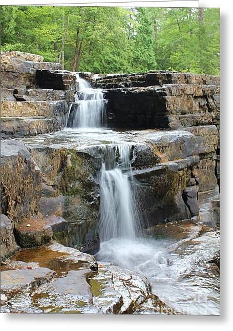 Dismal Falls II Greeting Card by Laurinda Bowling