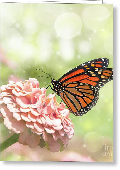 Dreamy Monarch Butterfly Greeting Card